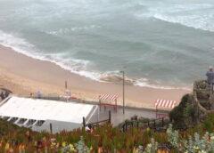 Torres Vedras | Cadáver de baleia-anã deu à costa na Praia da Formosa (Santa Cruz)